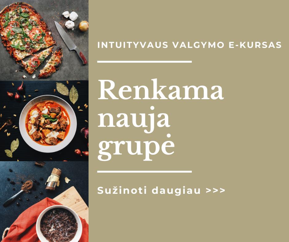 INTUITYVAUS VALGYMO E-KURSAS web